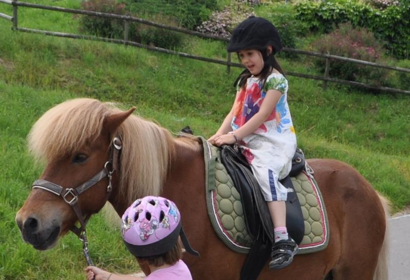 Pferdeparty (1.Kindergartenjahr): Ich organisierte einen Ausflug zum Ponyhof. Die Kinder durften die Pferde putzen, satteln, führen, reiten und füttern.